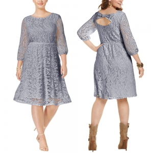 Plus Size Lace Skater Dress