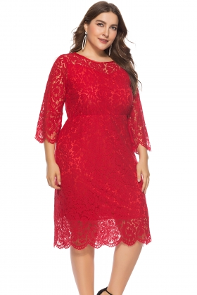 Plus Size Mature Dress with 3/4 Sleeves