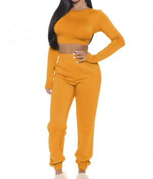 Autumn Solid Color Tight Crop Top and Track Pants Set